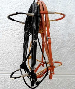 Trail and Schooling Bridles