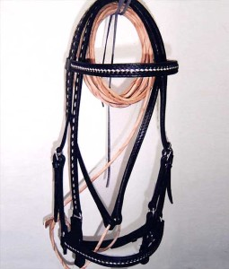 Leather show or trail bridle with ontrasting braid.