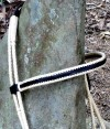 10-0043-bridle