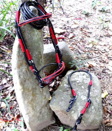 Beautiful Black and Red Show Bridle
