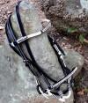 2-0042-bridle
