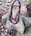 3-039-redblackthread-bridle