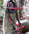 8-039-redblackthread-bridle
