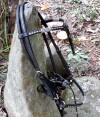 2-0027-bridle