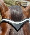 7-0026-horse-bridle