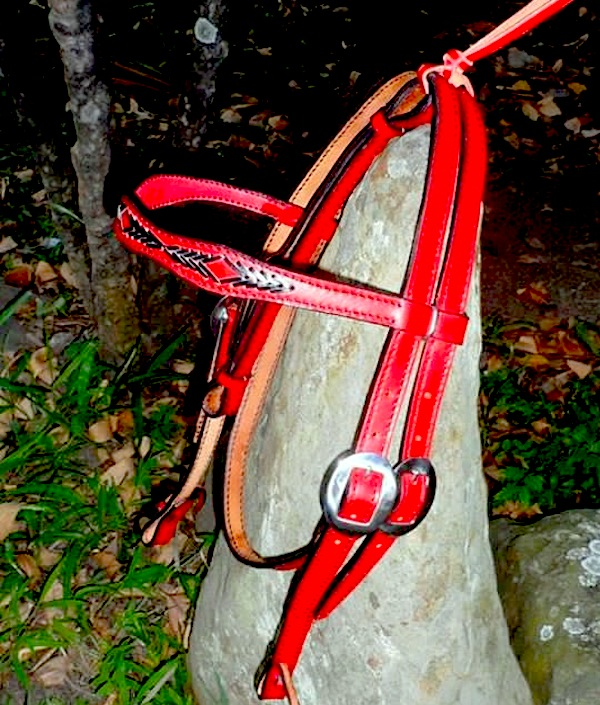 Custom Red Western Bridle