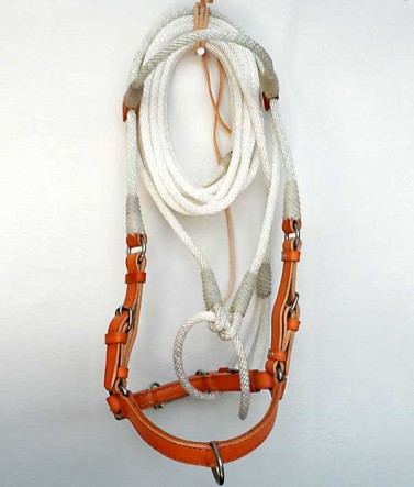 Handmade Training Rope and leather jaquima