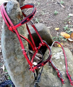 Beautiful custom red and black bridle