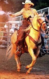 paso-finoo-stallion mounted shooting