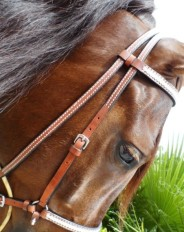 custom bridles