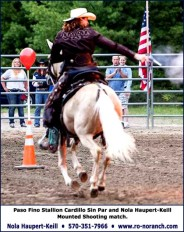 Paso Fino Mounted Shooting