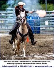 Pinto Paso Fino mounted shooting Palomino Stallion