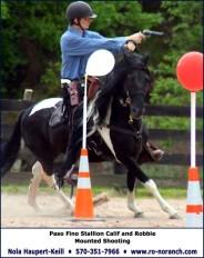 Pinto Paso Fino mounted shooting