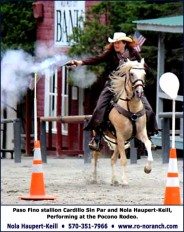 Palomino Paso Fino mounted shooting