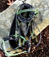 Green and Black Custom Leather Show Bridle