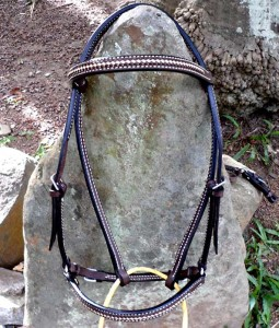 Beautiful, handmade bridle