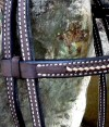 Browband Beautiful, handmade bridle