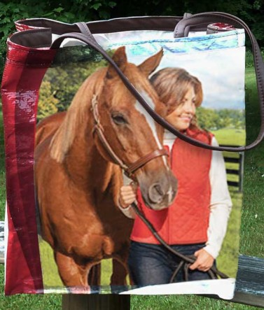 Small Recycled Horse Feed Carry Bag Red Equine Senior